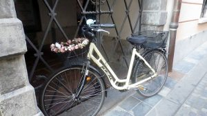 One of the city's many bicycles