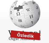 Wkiwpedia banned in Turkey