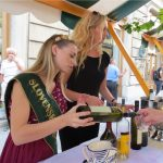 Slovenian wine: what to drink, wine traditions, wine growing regions