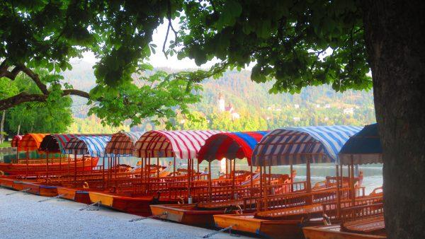 Pletna at Mlino on Lake Bled