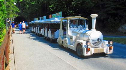 Lake Bled Tourist Train